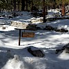 Mt. Whitney Campgrounds (Group)