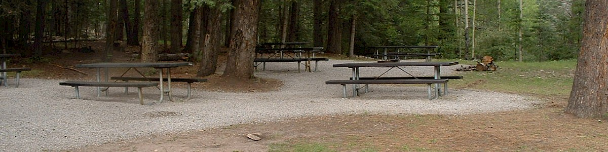 Black Bear Group Campground