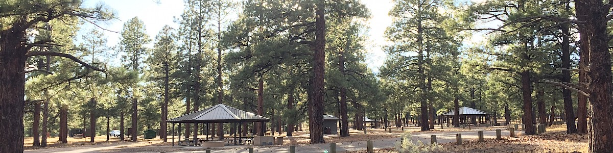 O'Leary Group Campground
